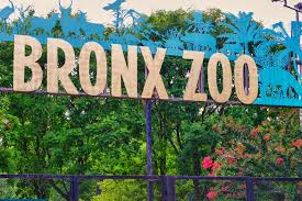 The Bronx Zoo entrance sign with blue animals and gold lettering.