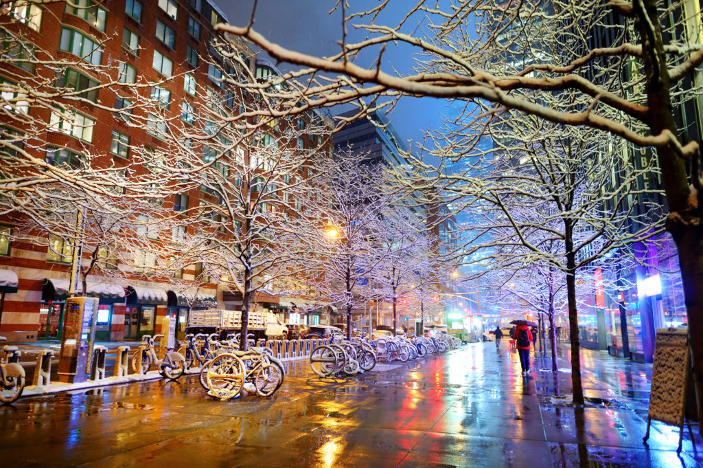 A winter street in NYC with snow covered branches & large bicycle rack.