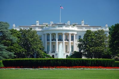 View of the White House in Washington D.C. on a bright sunny day with a view from the grass over the bushes and red flowers.