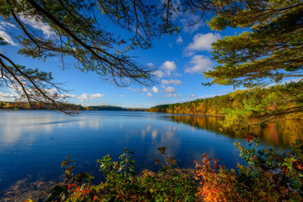A beautiful view of fall colors surrounding a blue lake.